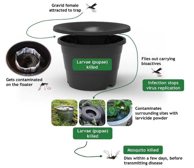 Diagram of how an In2Care mosquito trap works